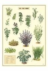 VINTAGE POSTER - Herbs (50x70cm)