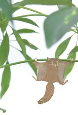 Gouden plantenhanger - Vliegende Eekhoorn