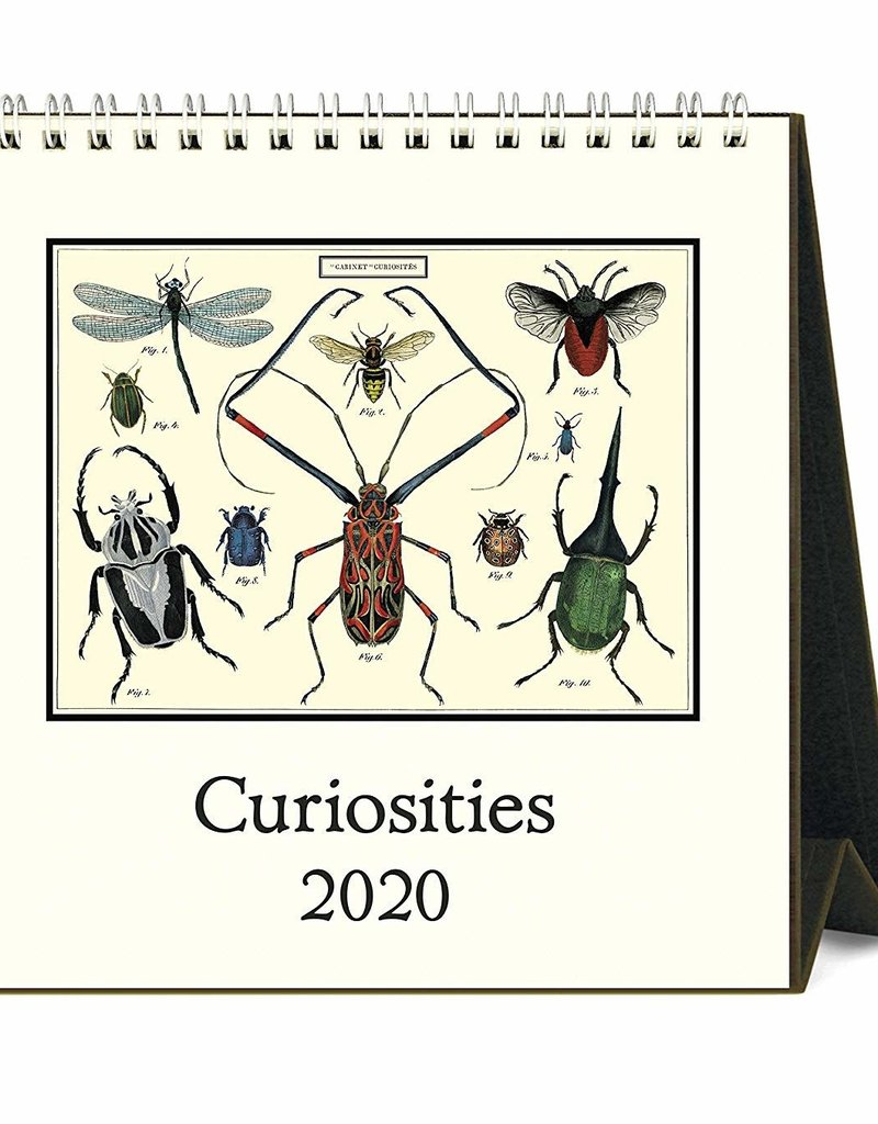 BUREAUKALENDER - Curiositeiten