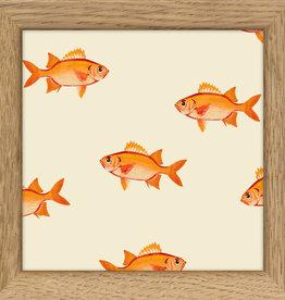 kader met goudvisjes (10x10cm)