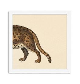 Eiken kader met achterkant tijger (15x15cm)