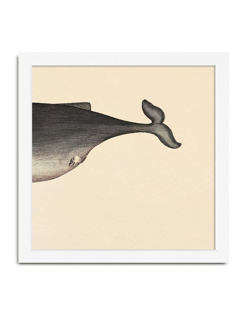 Eiken kader met achterkant walvis (15x15cm)