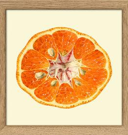 Eiken kader met opengesneden mandarijn (15x15cm)