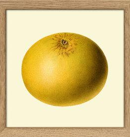 Copy of Eiken kader met  mandarijn (15x15cm)
