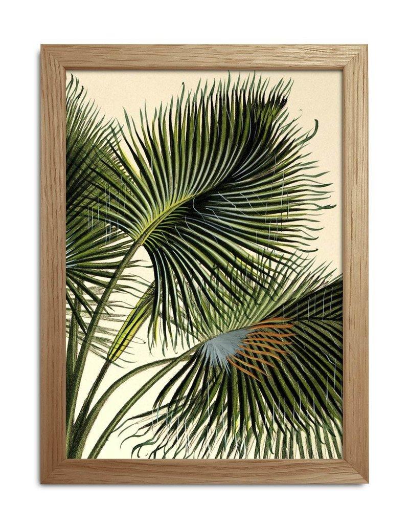 Eiken kader met vintage palmprint II ( 15x21cm)