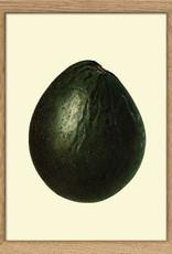 Copy of Eiken kader met mango ( 15x21cm)