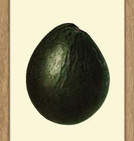 Eiken kader met avocado ( 15x21cm)