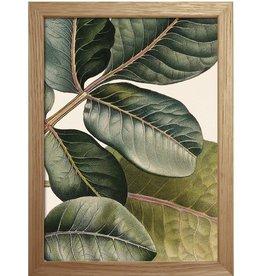 Eiken kader met exotisch blad ( 15x21cm)