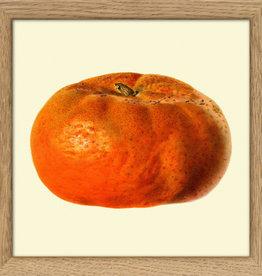 Copy of Eiken kader met opengesneden mandarijn (15x15cm)