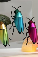 DIY DECORATION - Coléoptère Buprestidae