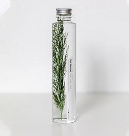Bottled Specimen No. 001 (200 ml)