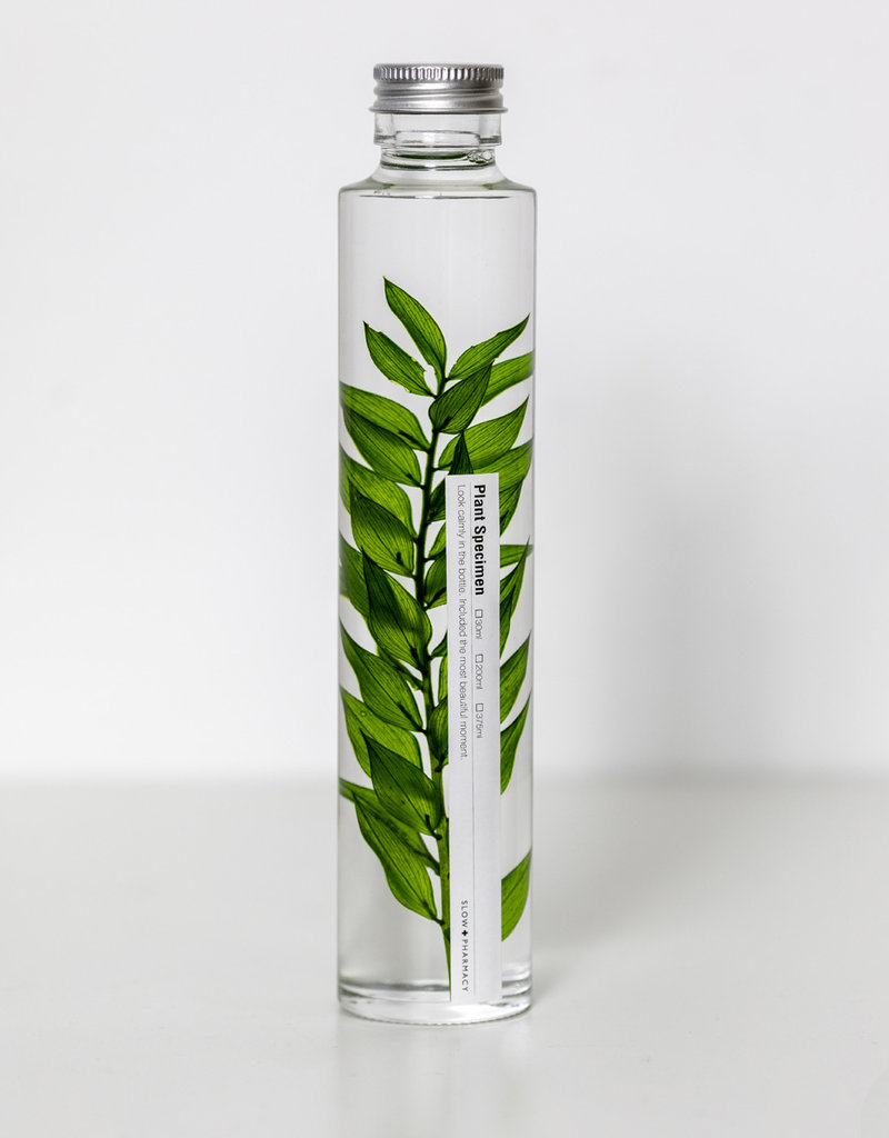 Bottled Specimen No. 004 (200 ml)