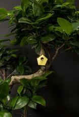 nichoir pour vos plantes