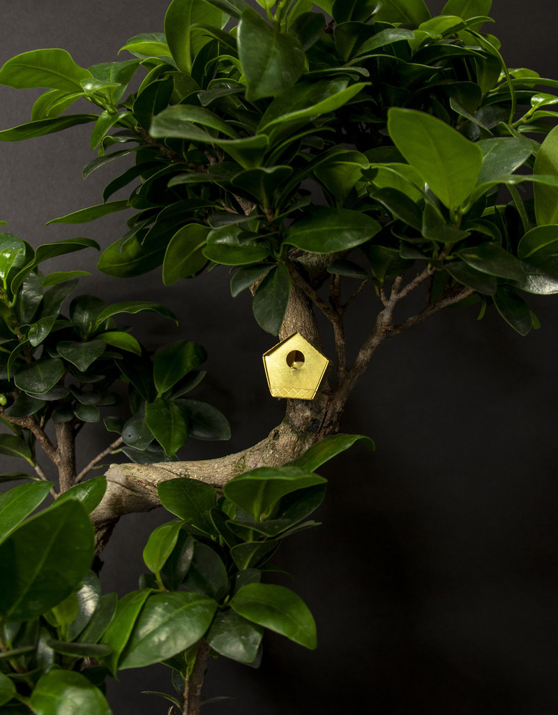 Small birdhouse for your plants