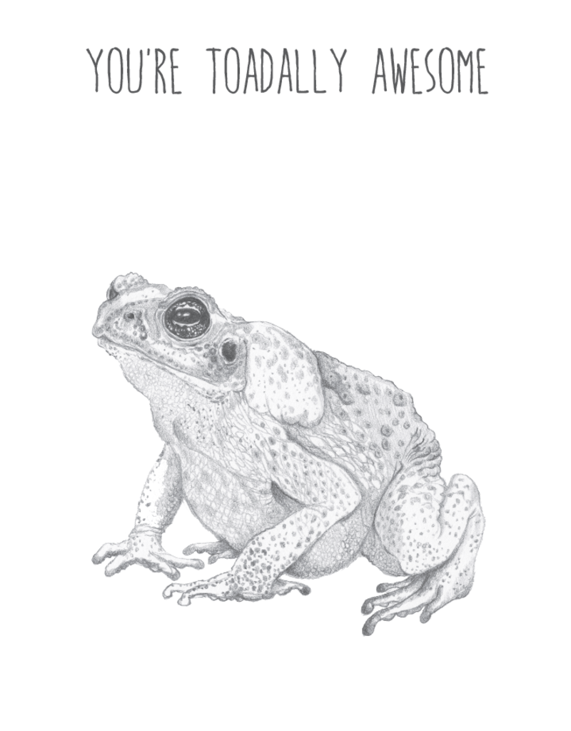 Animaux Spéciaux POSTKAART - You're Toadally Awesome