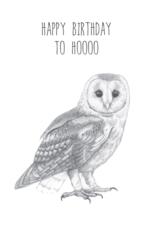 Animaux Spéciaux CARTE POSTAL - Happy Birthday to Hoooo