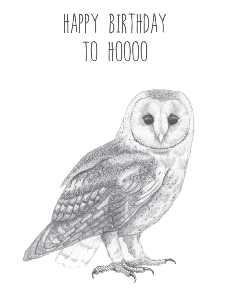 Animaux Spéciaux POSTKAART - Happy Birthday to Hoooo