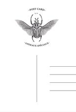 Animaux Spéciaux POSTCARD - Animaux Spéciaux - Will You Bee My Valentine