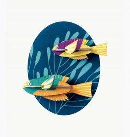 DIY WALL DECORATION - Spanish Hogfish