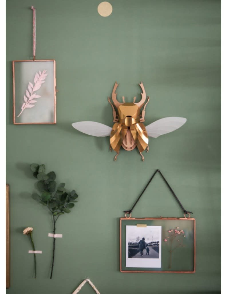 DIY DECORATION - Stag Beetle