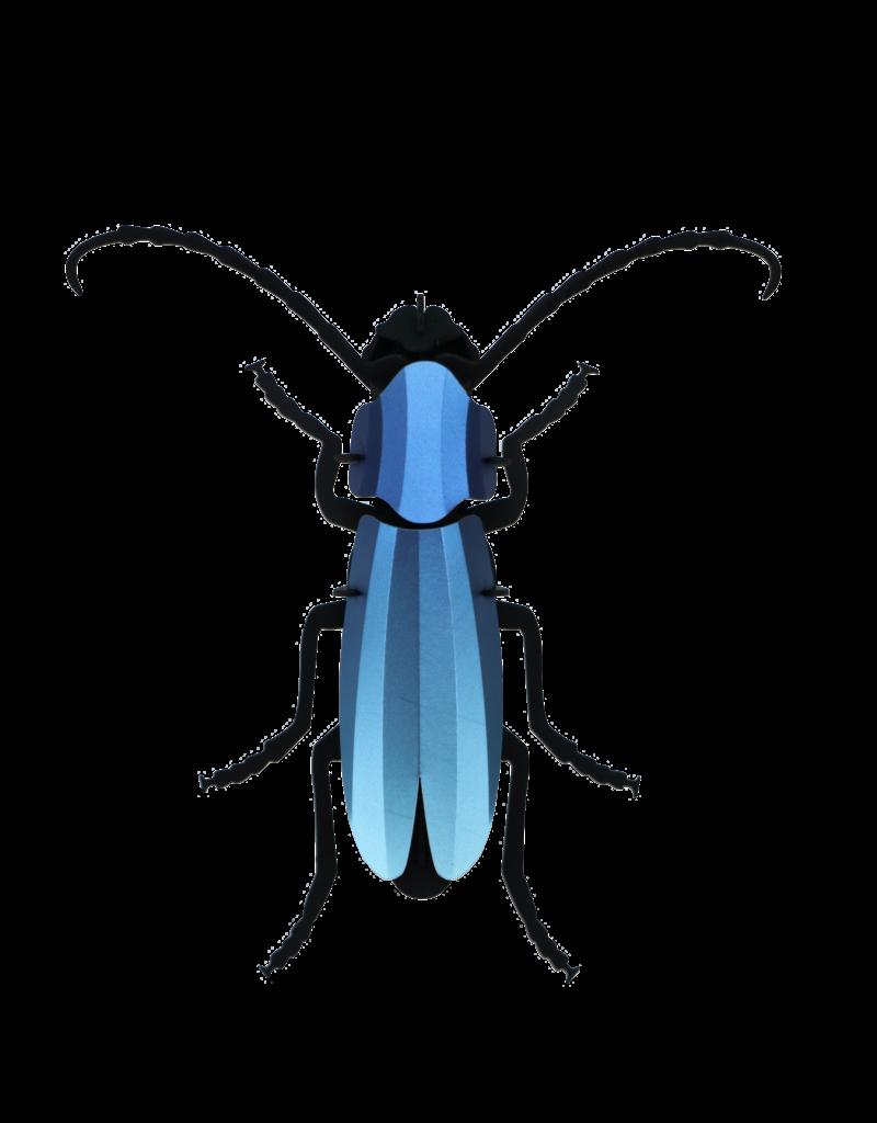 DIY DECORATION - Rosalia Beetle