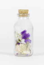Animaux Spéciaux Botanical Wonders Assortiment droogbloemen paars