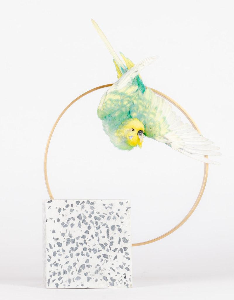 Animaux Spéciaux Swinging boekensteun met vogel