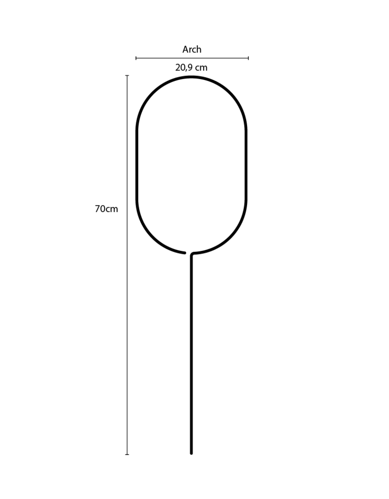 TUREUR DORE- Arch