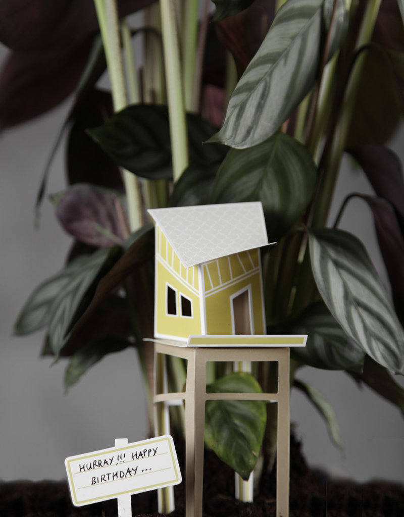 TREEHOUSE for your plants