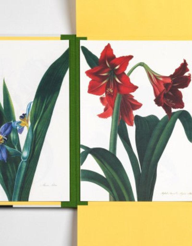 PORTFOLIO D'IMPRESSION D'ART - Fleurs