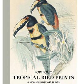 KUNST PORTFOLIO - Tropische vogels
