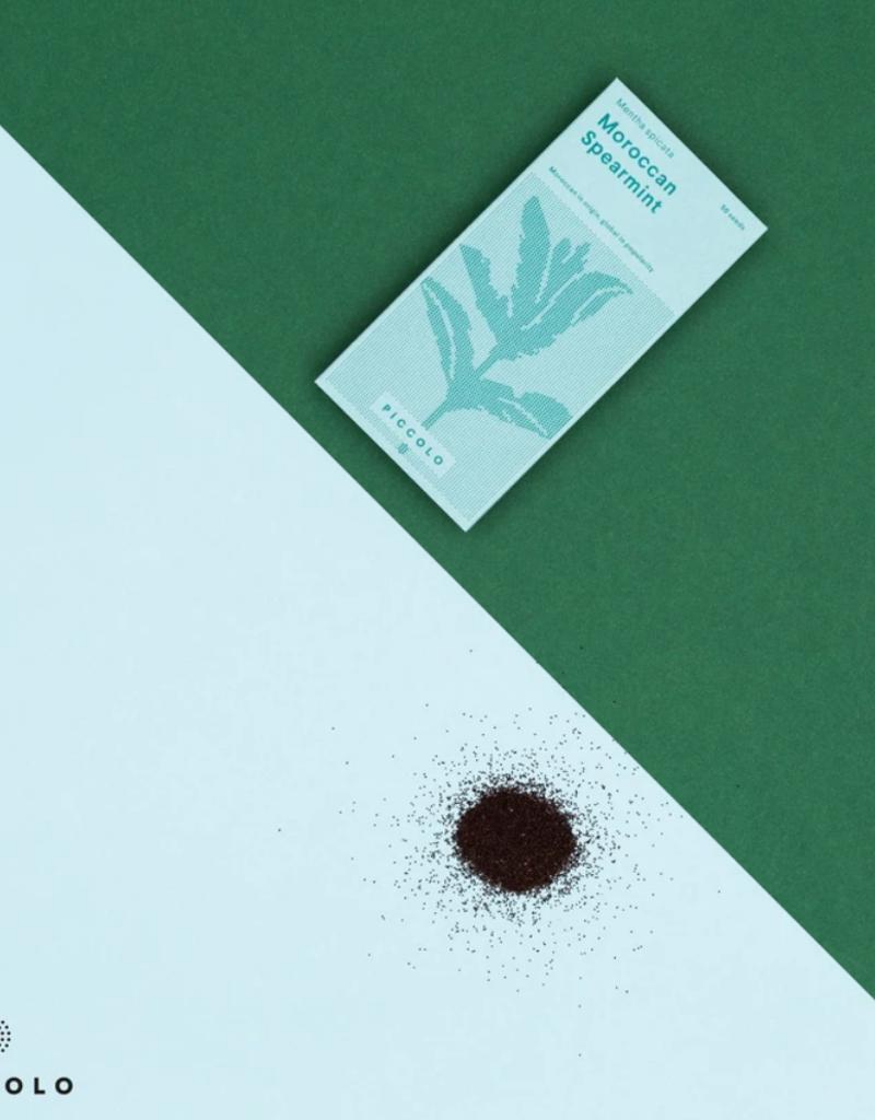 Moroccan spearmint- Mentha spicata