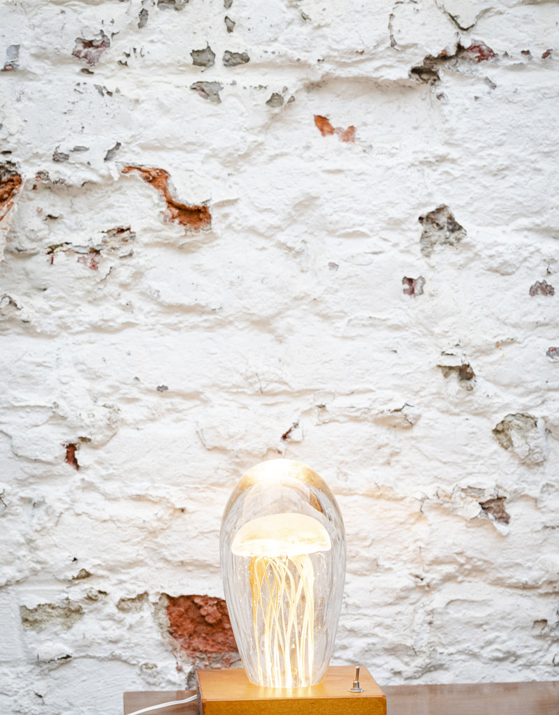 Animaux Spéciaux Lampje Glowing Roots L