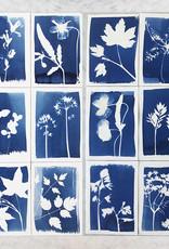 CYANOTYPE KIT - DIY KIT om je eigen plantenprints te maken
