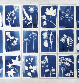 CYANOTYPE KIT - DIY KIT maak zelf je plantenprints
