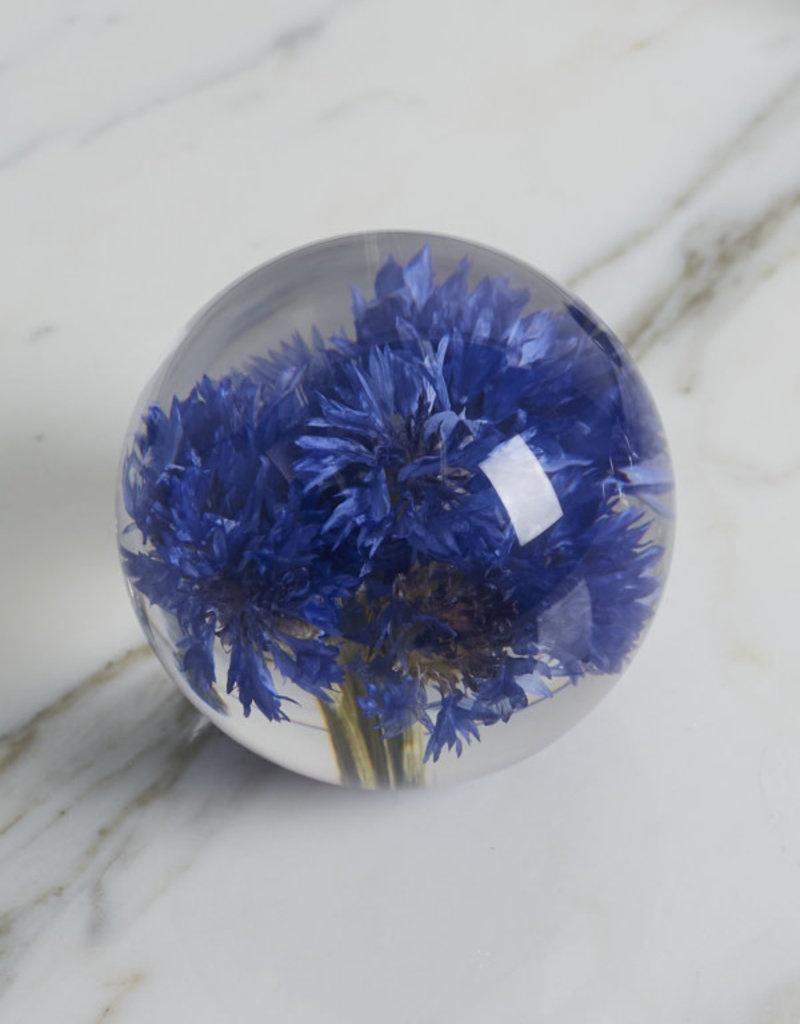 PAPERWEIGHT - Cornflower