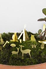 Mini-camping voor je planten