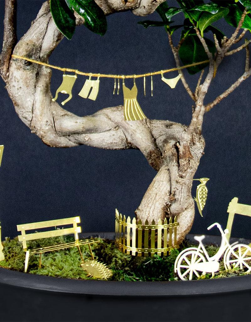 Mini-fietstocht voor je planten