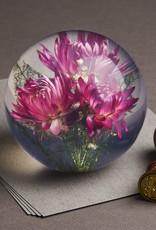 Hafod Grange PRESSE-PAPIER - Gedroogde Roze Strobloem