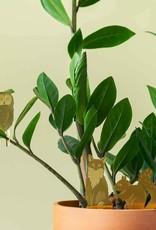 GOLDEN PLANT HANGER - Owl