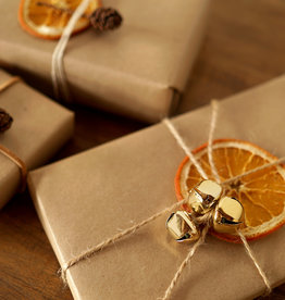 Animaux Spéciaux WITH GIFTWRAPPING