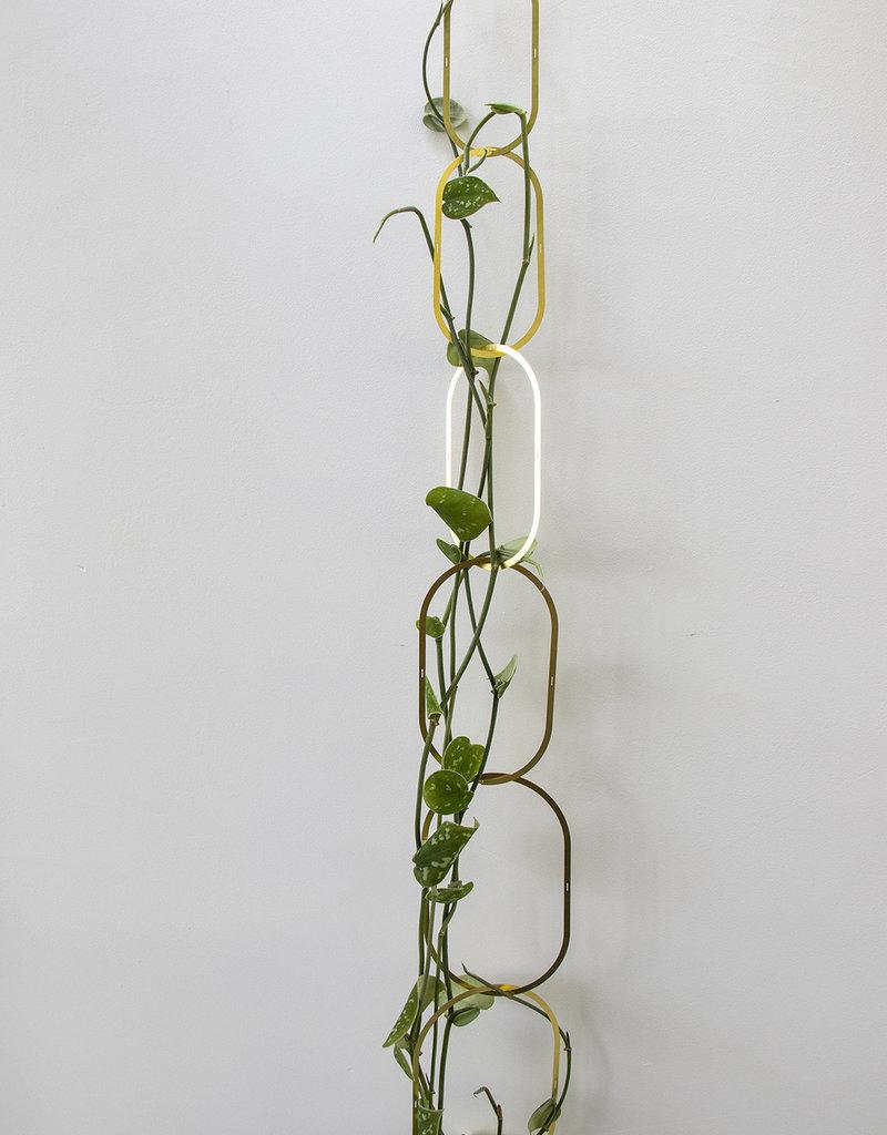 Koperen Plantenschakel