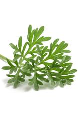 ABSINTALSEM - Artemisia absinthium