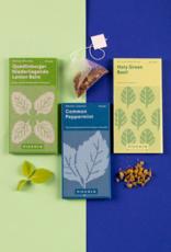 COLLECTE DE GRAINES: Thé aux herbes