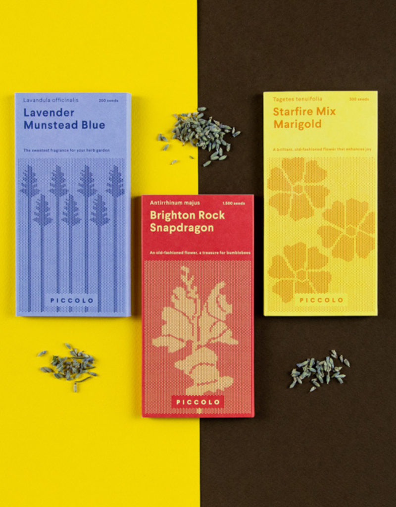 SEED COLLECTION: Pollinator's flowers