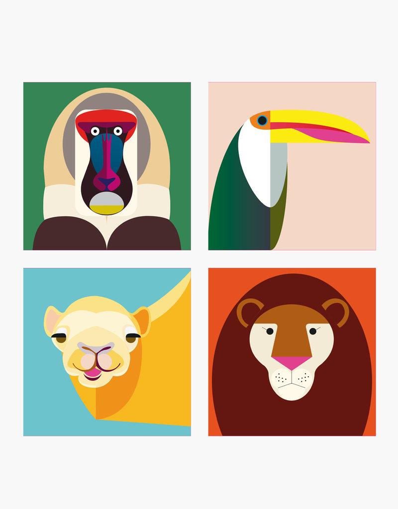 MAGNETS ANIMAUX SAUVAGES - Assortiment de singes