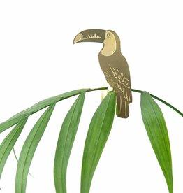 CINTRE DORE PLANTE - Toucan toco