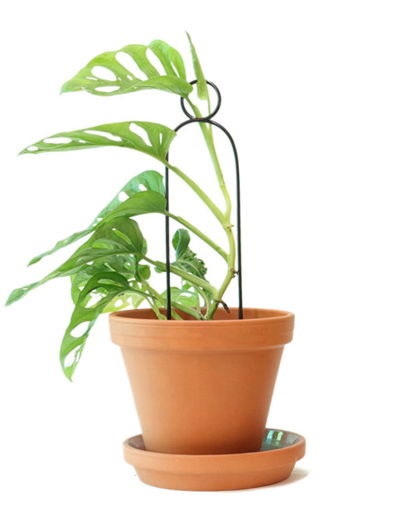 Mini Support Pour Plantes - pompom