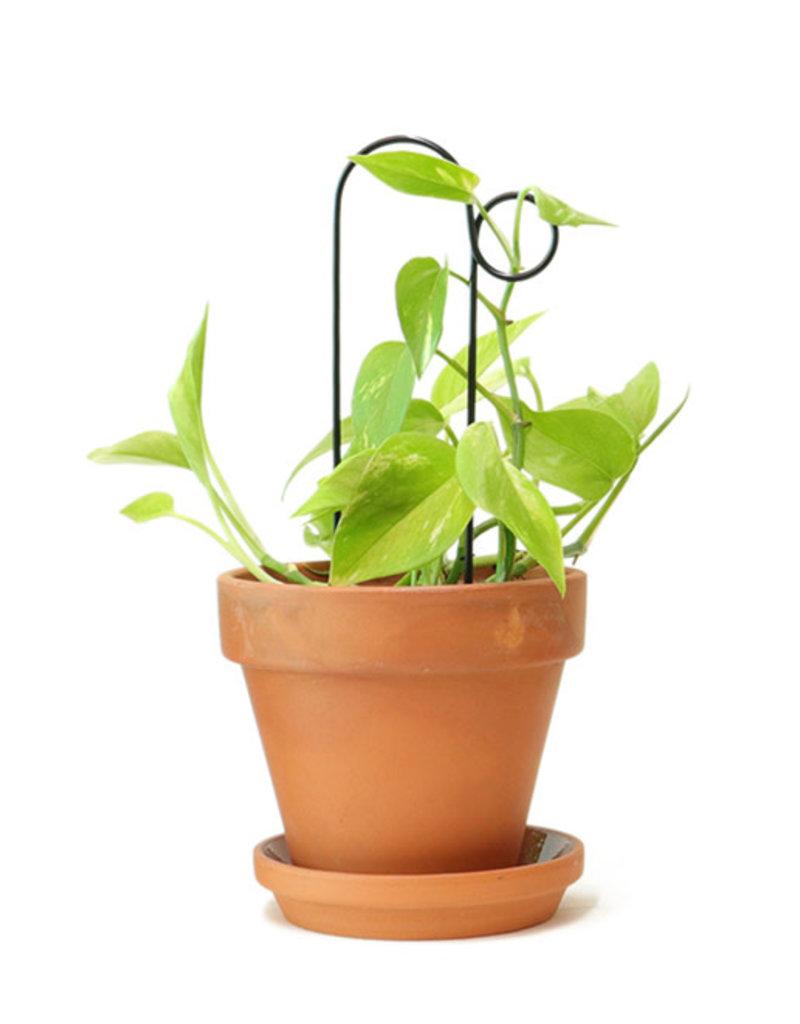 Mini Support Pour Plantes - Bump