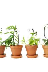 SET OF 4 MINI PLANT SUPPORTS